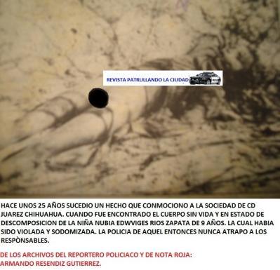 20131220061749-crueldad-sin-limites.jpg