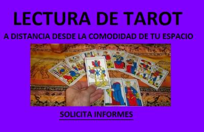 20190814061300-tarot.png