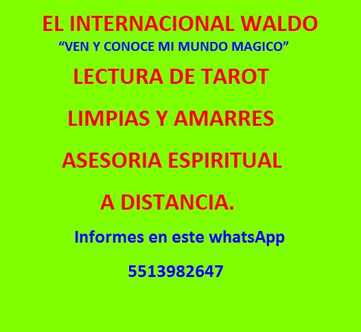 20210621041347-perfil-nvo-11.png